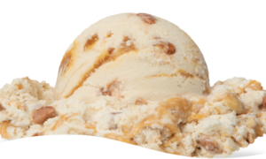 Praline Pecan Ice Cream