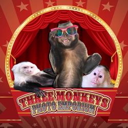 Three Monkey's Photo Emporium
