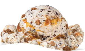 Oatmeal Cookie Craving Ice Cream